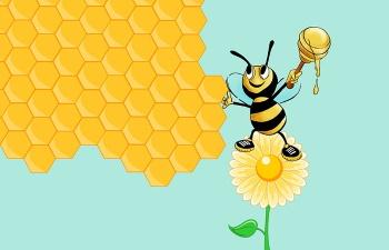 Hogyan készül a méz