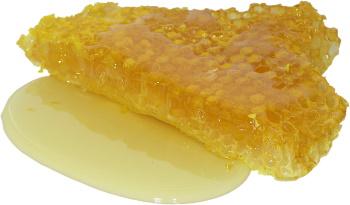Méz cukortartalma