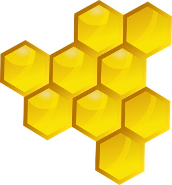 Méz hatása